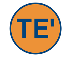 TE' Boutique Logo