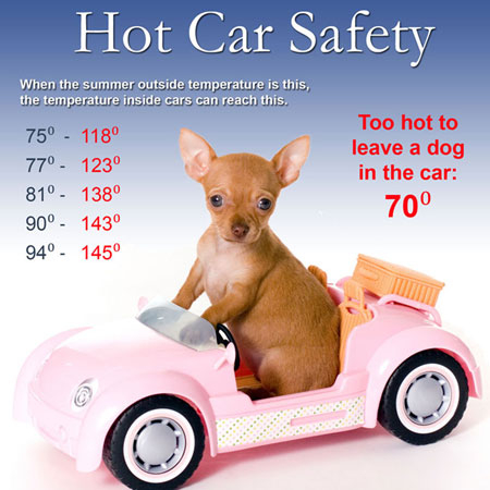 outlets-anthem-hot-car-safety