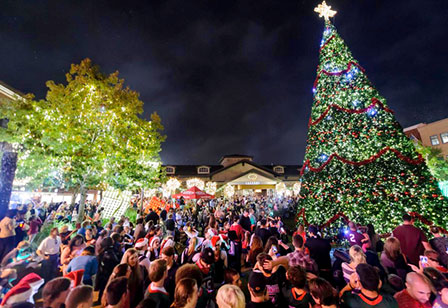 kicking off a holiday season of events the celebration continues with live musical performances entertainers and holiday carriage rides - Christmas Tree Market