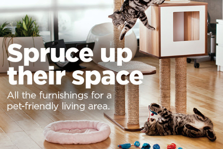 The Village at Meridian ::: Pet-Friendly Furnishing ::: Petco