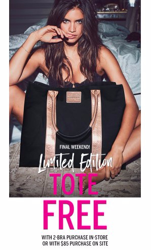 Limited Edition Tote Free With Two Bra Purchase