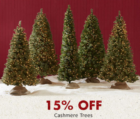 15% Off Cashmere Trees - Eastwood Mall :: 15% Off Cashmere Trees At Big Lots :: 11/03/2018 To